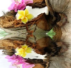 décor fleuri : noix de coco ouverte, fleurs