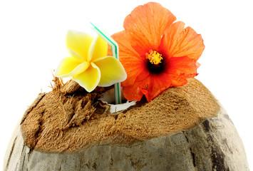 boisson rafraîchissante : coco des îles, fond blanc