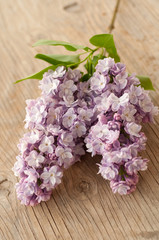Lilac on wooden surface