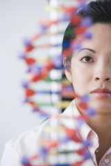 Asian female scientist looking at DNA model