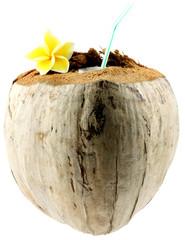 coco à boire, paille dans noix fleurie de coco, fond blanc