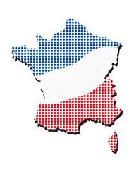 francia tricolore a pois