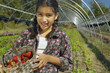 Hispanic girl holding basket of organic strawberries