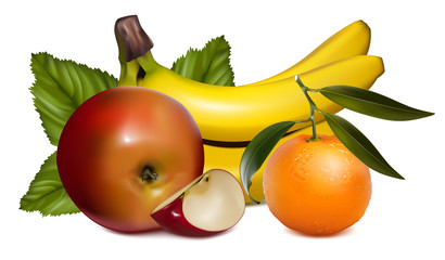 Vector illustration of fruits.