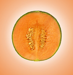 melon section