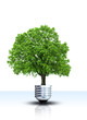 Ökologie und Umweltschutz Konzept