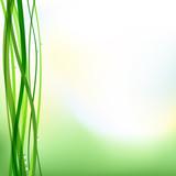 Fresh nature background, vector, gradient mesh, EPS10 poster