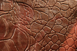 Snake leather skin imitation (python, boa) poster