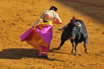 Corrida - Torero dancing with the Bull