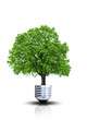 Ökologie und Naturschutz