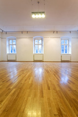 Empty art gallery with blank walls