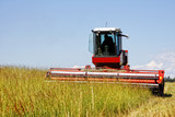 Large Swather Harvesting a Grass Field for Livestock Hay poster