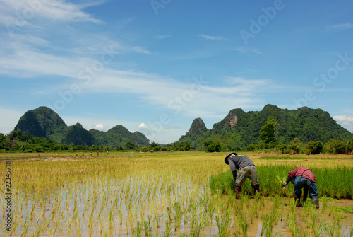 farmer and hill in north Thailand
