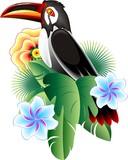 Tucano-Toucan-Vector Icon