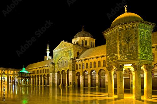 Umayyad Mosque - 22364560