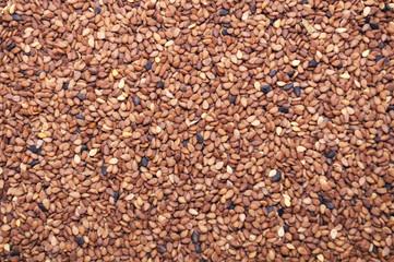 Tan Sesame Seeds