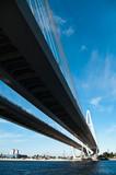 Cable-braced bridge across river Neva, St. Petersburg, Russia poster