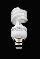 fluorescent bulb vertical