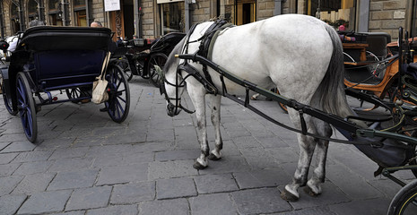 carrozza
