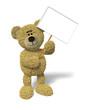Nhi Bear holding a sign
