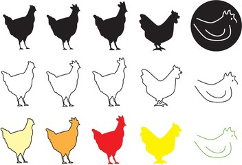 Pollo Icona - Chicken Icon