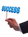 Success awaits atop of the ladder poster