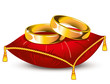 wedding rings on red satin pillow with gold tassels