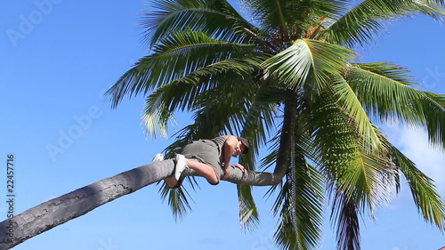 Man is climbing on a palm tree