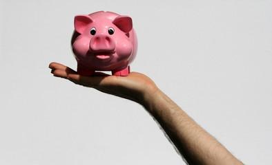 tirelire, cochon, rose, argent, banque,main