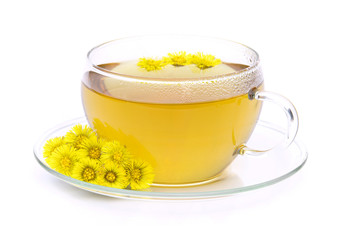 Tee Huflattich - tea Coltsfoot 05