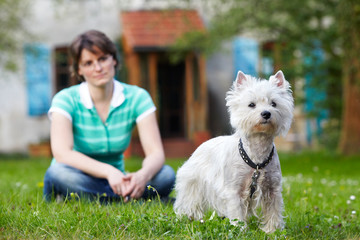 woman with young West Highland White Terrier 03