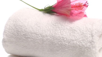 Spa towel and hibiscus flower zoom out - HD