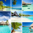 Collage of tropical images from moorea and tahiti