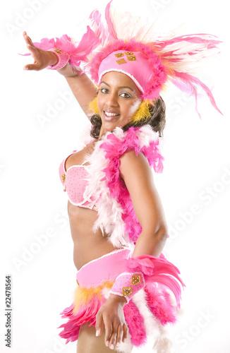 carnaval - 22478564