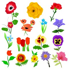 vector collection of beautiful garden