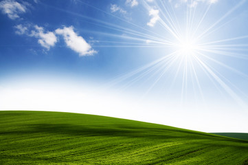 Sun and field