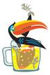 Vector toucan