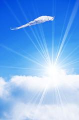 Kite in sky