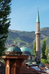 Sarajevo - Historical fount (Bosnia and Herzegovina)