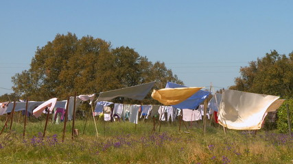 Clothes drying in the wind