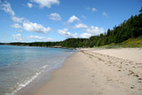 Sandy Beach in Rural Newfoundland poster