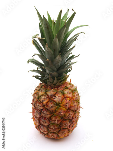 Single pineapple on white