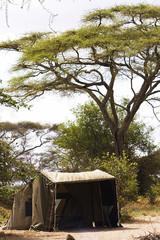 Camp in Africa