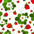 roleta: Seamless pattern with a strawberry
