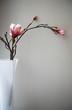 artficial flowers in case