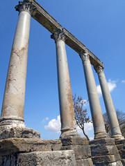 Colonnes monolithiques à Riez (04)