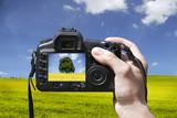 Fototapety Landschaftsfotografie