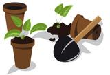 transplanting flower seedlings poster