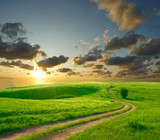 Fototapety Summer landscape with green grass, road and clouds