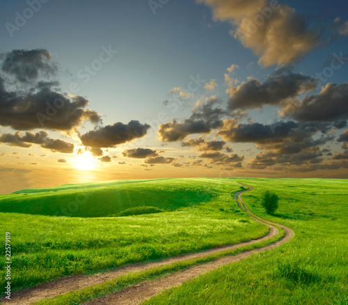 Fototapety, obrazy : Summer landscape with green grass, road and clouds
